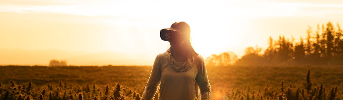 Visit One Of Our Farms With Virtual Reality
