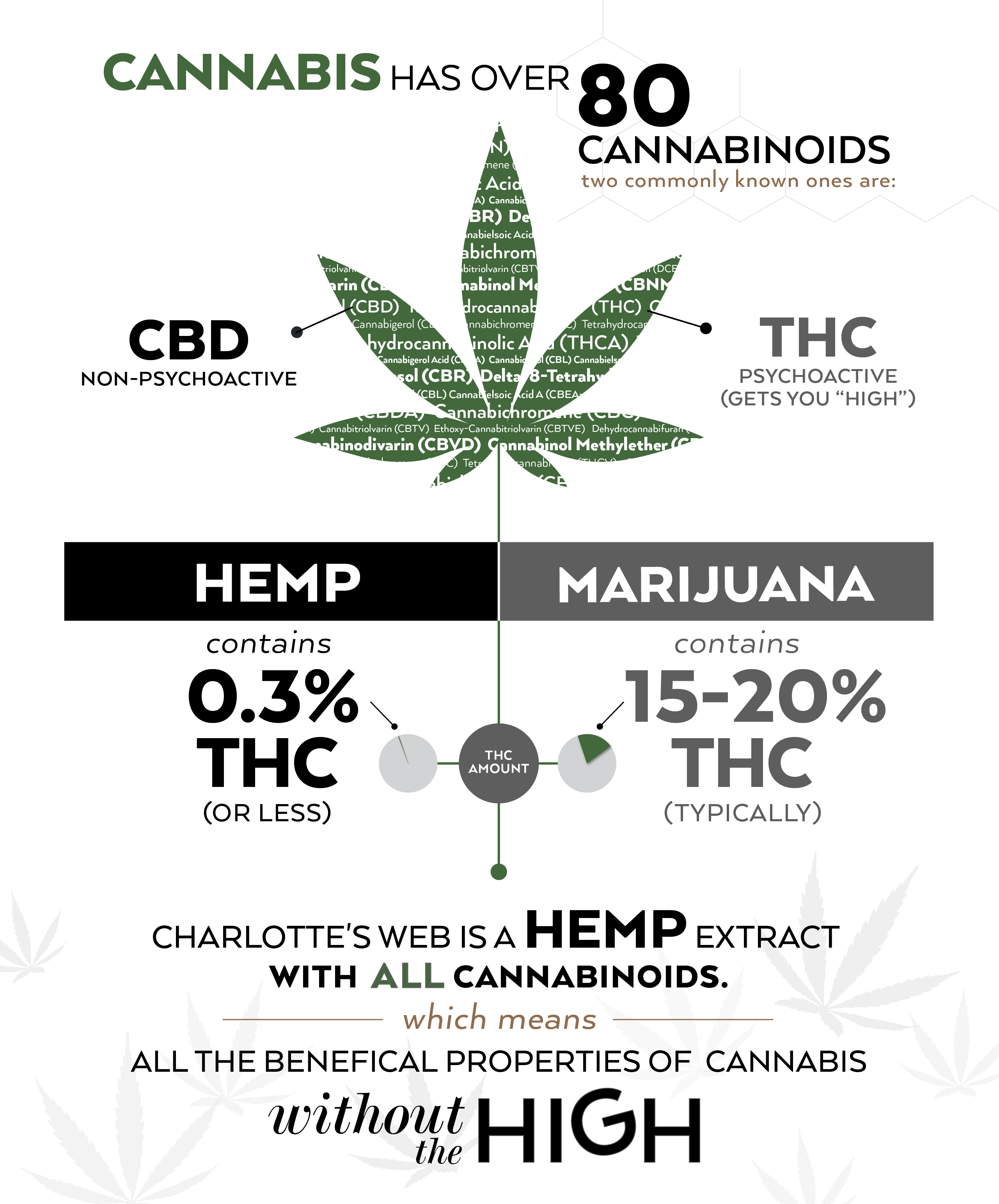 Hemp Oil vs. CBD Oil: What's The Difference? | Chronic Therapy