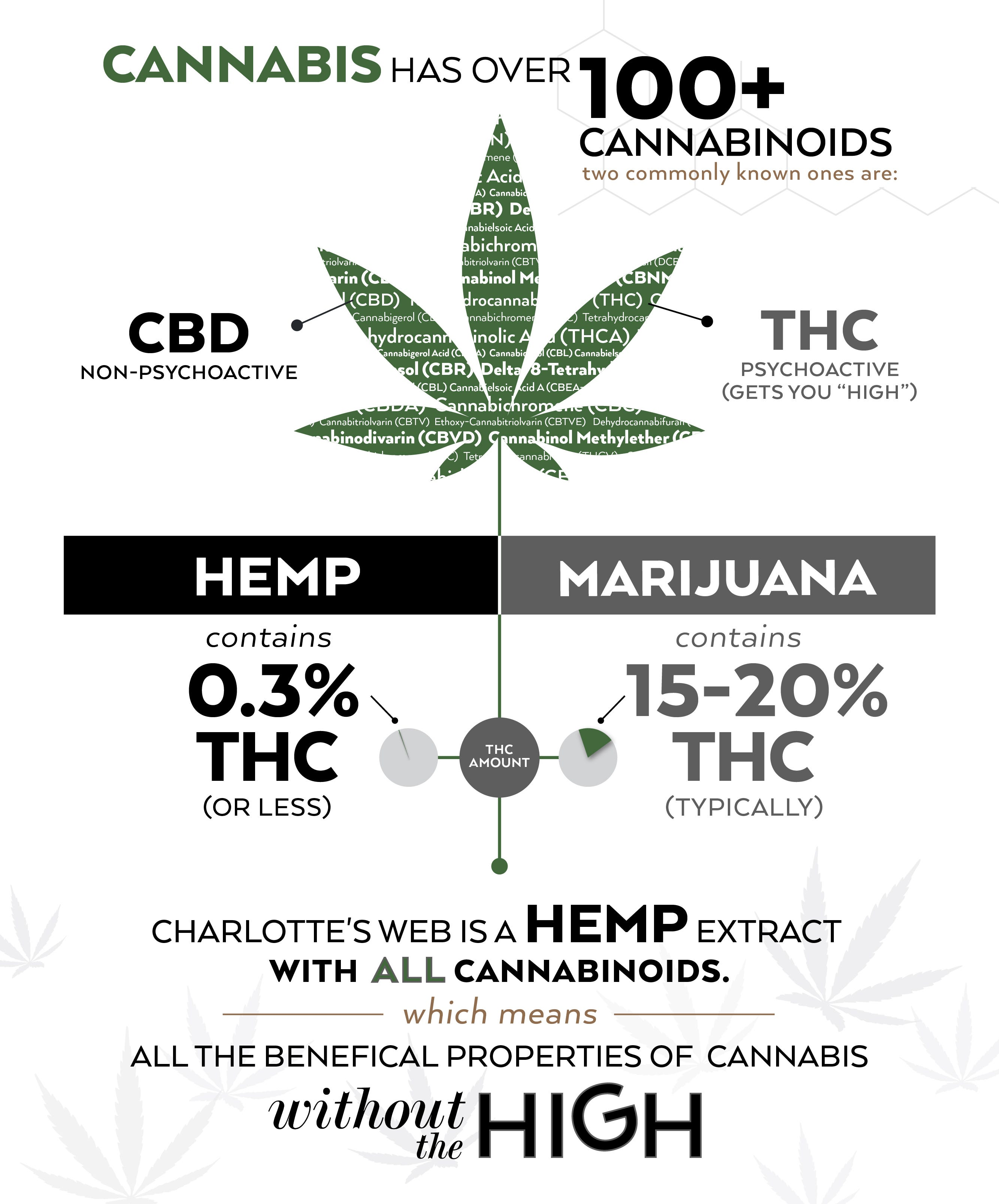 Tommy Chong Changing The Marijuana Culture One Joint At A Time CW_Website-CBDvsMMJ_infograph_R6_1_