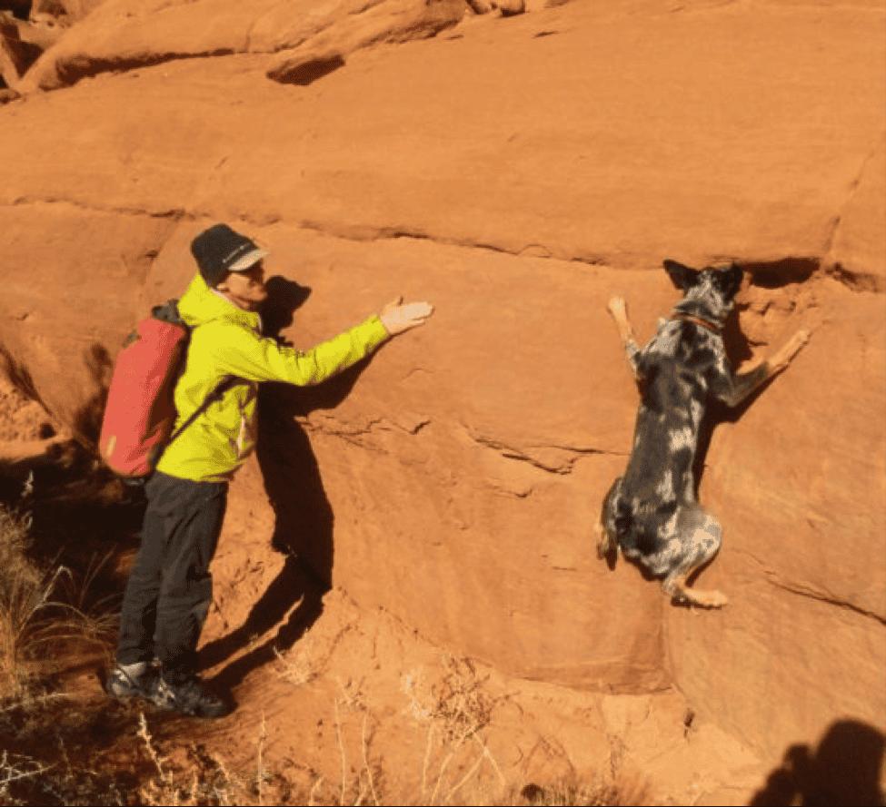 Steph Davis and Cajun The Dog!