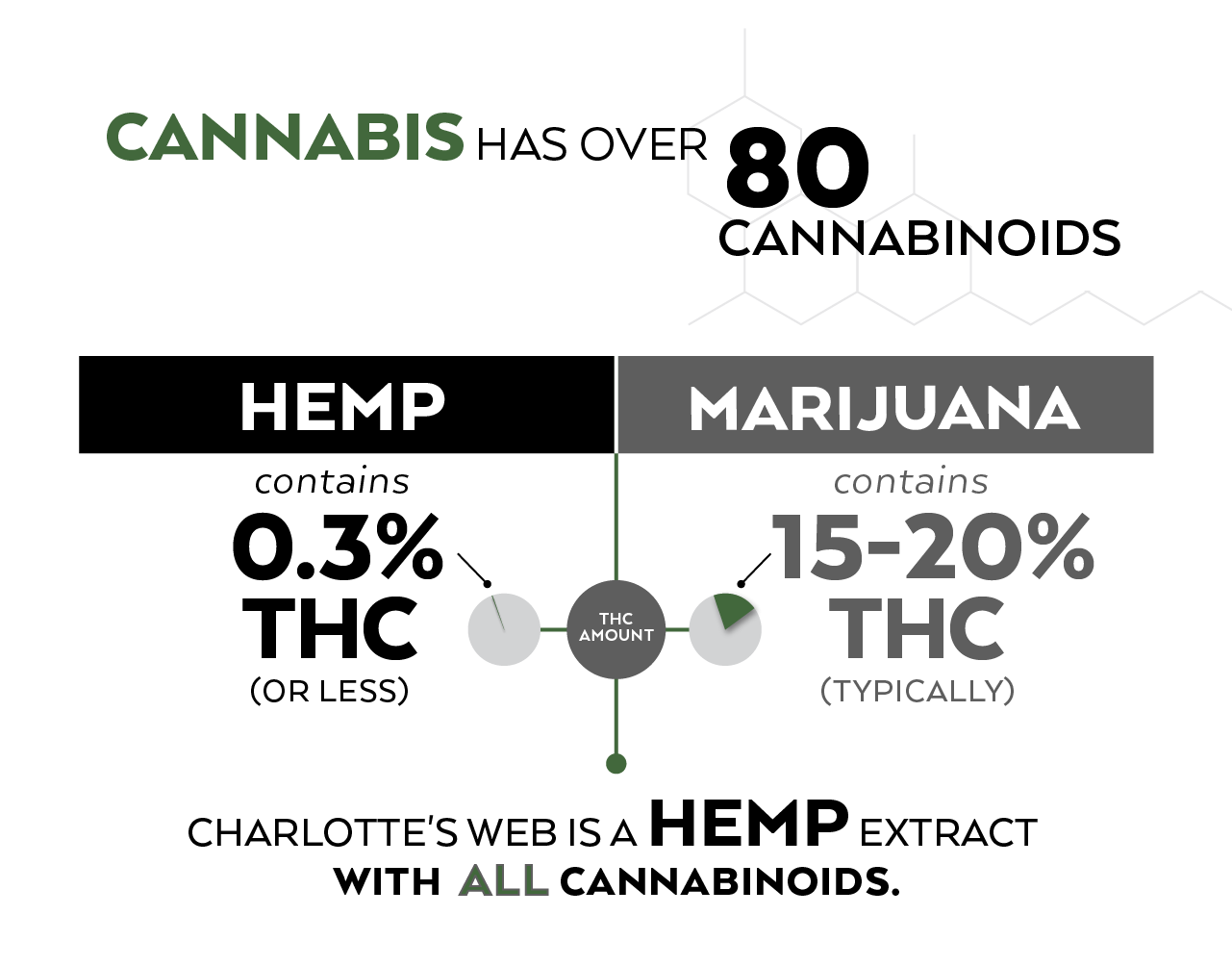 Cannabis 101: Knowing the difference between hemp, cbd and cannabis
